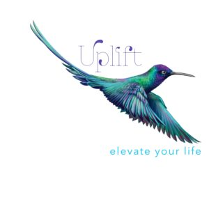 Uplift Ministries logo with blue green and purple hummingbird mid-flight, purple and blue letters, square